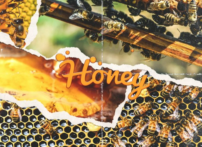 "HARRY FLAME – ""HONEY"""